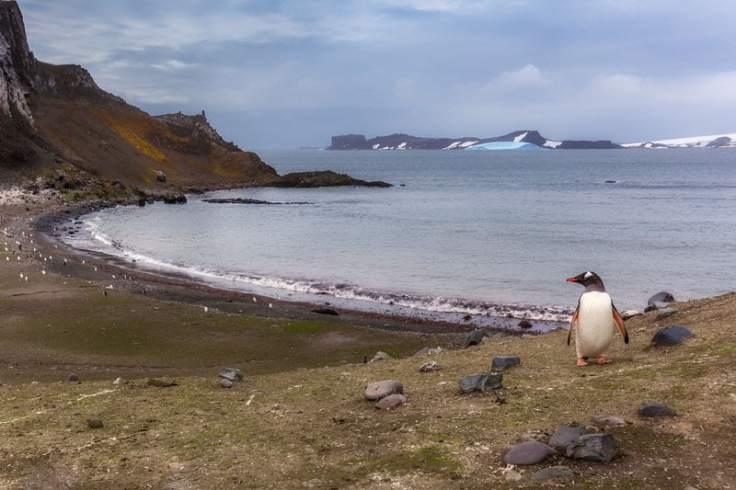 antarctica-beach